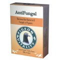 Anti Fungal box 200gr by Pigeon Vitality