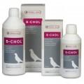 B-Chol 500 ml by Oropharma - Versele-Laga