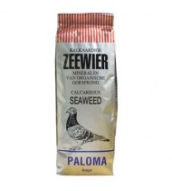 Zeewier - Seaweed by Paloma