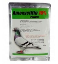 Amoxicillin 10% - 100g powder