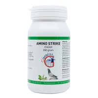 Amino Strike 300gr - protein supplement - by Giantel