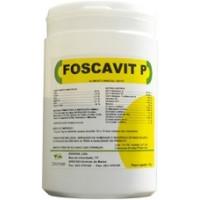 Foscavit P 100 g - vitamins and minerals - by Zoopan