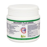 Recovery Plus Green 300gr - energy - recovery - by Giantel