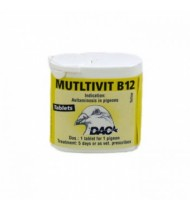 Multivit B12 - Recovery - by DAC
