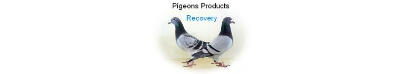 Pigeon Products Recovery